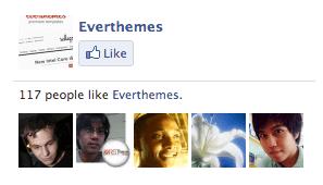 Facebook Like Box - Fortuna