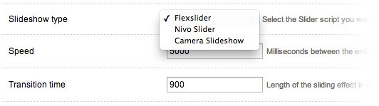 Slideshow options